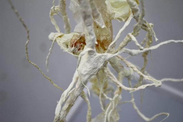 Metamorfose  Når noget transformeres, kalder vi det metamorfose. Dyr skifter udviklingstrin, planter bliver til muld, celler henfalder og bliver afsæt for noget nyt. Livet udfolder sig i cykliske forløb. En lotus kan kun blomstre frem, fordi der findes mudder, som kimen kan vokse i. Affald, udtjente former kan forvandles, genanvendes og blive til ressourcer. Udstillingen er et visuelt udtryk for en sådan forvandlingsproces.  Materialer fra hverdagen genbruges. Gammelt plast, pap, brugte handsker, tomme flasker omformes og forbinder sig med strengagtige formationer skabt af papir, hæklet tråd, lim og maling. Alt bearbejdes, omstruktureres og transformeres. Installationens komposition er som udgangspunkt nøje planlagt - men undervejs påvirkes vækstbetingelserne. Tilfældigheder påvirker værket. Uforudsigelige knopskydninger spirer frem og sætter aftryk på den endelige form.  Metamorfose bliver her at skabe og forme nyt liv af det kasserede. Måske er det makroforstørrelser af cellestrukturer, synapser eller nervebaner, som snor sig i et tyst univers. Måske er det filtrede lianer i en hvid regnskov. Forvandlingen kan fornemmes på tæt hold i udstillingsrummet.